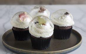 Recipe thumb cupcakes xionompales