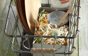 Recipe thumb akis petretzikis picnic salata laxano me dressing