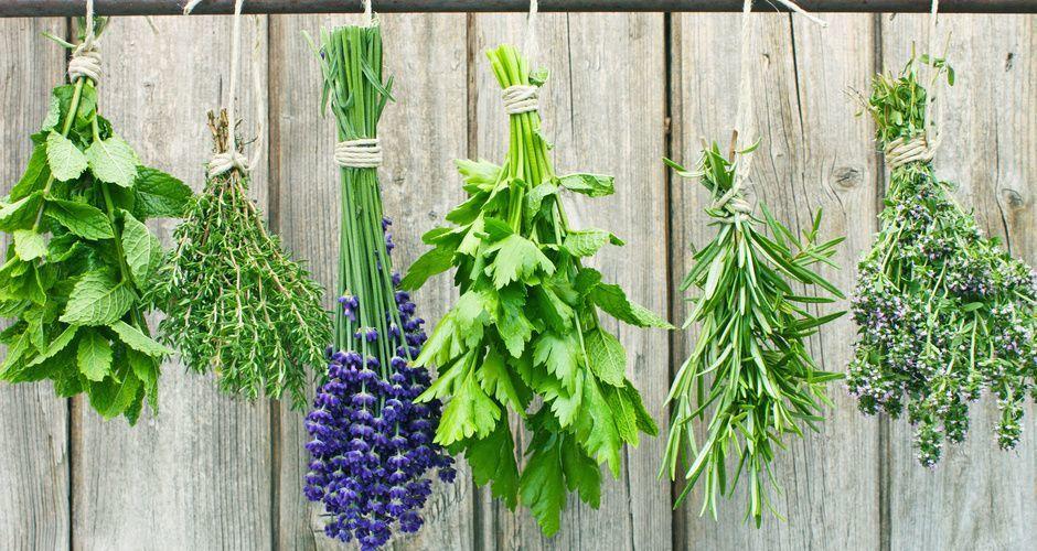 Recipe main recipe main tips akis petretzikis herbs