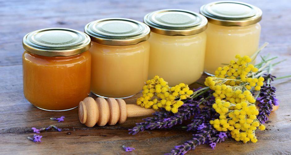 Recipe main tips akis petretzikis vasa tip 58 for site fotolia 54401807 subscription monthly m