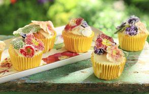 Recipe thumb akis petretzikis cupcakes me zaxaromenes primoules