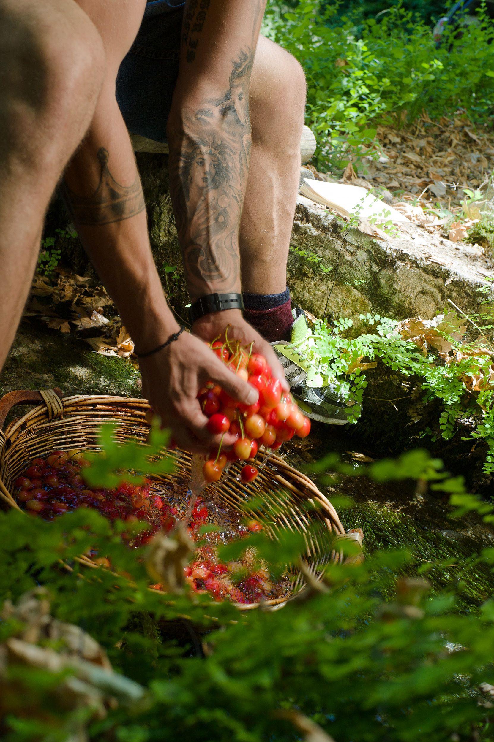 Sinevro secret garden  523