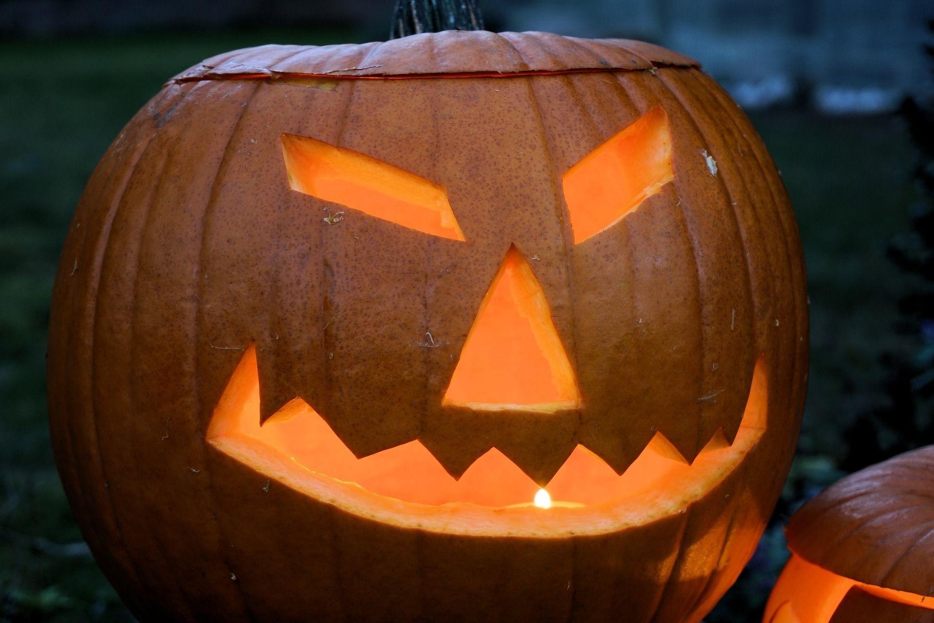 Pumpkin 1753120 1920